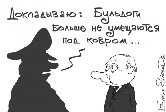 http://ancb.ru/files/text_photo/big/31_Buldogi_pod_kovrom.jpg